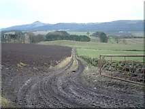 NO2010 : Farm track towards Strathmiglo by James Allan