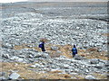 R3397 : Limestone Formations, Burren by Robert Bone