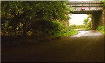 NT1784 : Railway Bridge by Simon Johnston