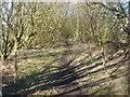 SD6307 : Dismantled railway near Dicconson Lane by Margaret Clough