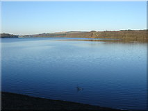 SD6212 : Lower Rivington Reservoir by Margaret Clough