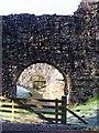 NY0881 : Lochmaben Castle by Lynne Kirton