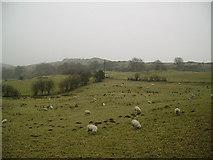 SD3583 : Farmland High Brow Edge by Michael Graham
