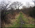NZ3115 : Footpath on the route of the Stockton to Darlington Railway by Alan Fearon