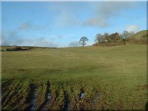 SD5483 : Farmland near Crooklands by David Medcalf
