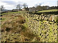SE0951 : Dry Stone Wall at Langbar by Derek Parkinson