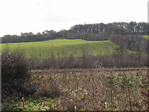 SE1721 : Field in Kirklees Park, Hartshead, Yorkshire by Humphrey Bolton