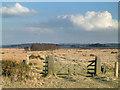 SK2967 : Beeley Moor. by Mike Fowkes