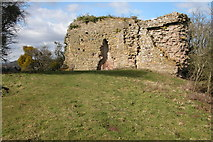 SO4430 : Fragments of Kilpeck Castle by Philip Halling