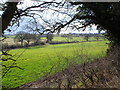 SP0563 : Countryside and fields just off the A448 near Studley by peter lloyd