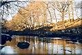 NZ0714 : The Tees near Rokeby by Gordon Hatton