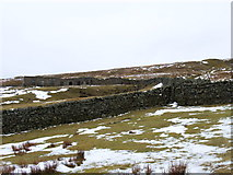 NY8135 : Grasshill Farm by Andrew Smith