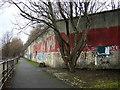 NS6162 : Clyde Walkway at Dalmarnock by Iain Thompson