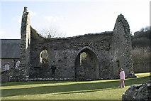 SN1645 : St Dogmaels Abbey Ruin by Gisela Mann