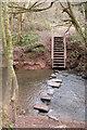 SO8066 : Stepping stones, Shrawley Wood by Philip Halling