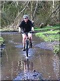 NT5682 : Wet wet wet by Alastair Seagroatt