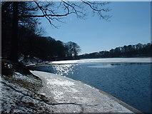 SE3337 : Roundhay Park Lake in winter by John Turner