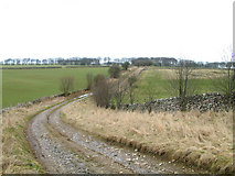 SK1662 : Green Lane. by Mike Fowkes