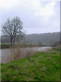 ST6570 : River Avon, Keynsham Hams by Linda Bailey