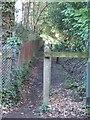 SU9467 : Footpath Following the Railway by Martyn Davies