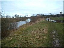 NS7753 : Clyde Walkway near Upper Carbarns by Chris Wimbush