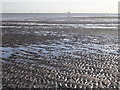 SD2261 : Mud Flats, South Walney Island by Chris Upson