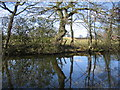 SP0675 : Pool at Highfield Farm by David Stowell