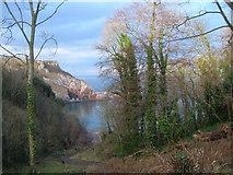 SX9364 : Anstey's Cove from Bishop's Walk by Derek Harper