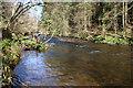 NS9898 : The River Devon at Vicar's Bridge by Val Vannet