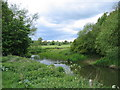 SP3667 : River Leam by David Stowell