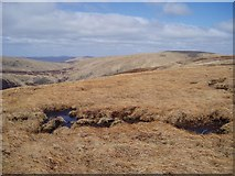NT1513 : The top of Carrifran Gans by Eileen Henderson