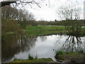 SJ9239 : Pond at Barlaston Common by Phil Eptlett
