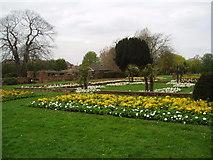 TQ4666 : Priory Gardens, Orpington, Kent by Dr Neil Clifton