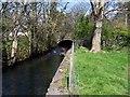 SD1087 : The River Annas by John Holmes