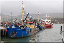 J1418 : Mussel dredgers at Warrenpoint harbour by Albert Bridge
