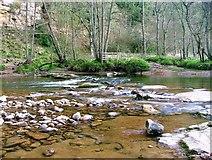 NY7962 : River Allen by Mick Garratt