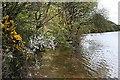SW7632 : Lakeside, Argal Reservoir by Tony Atkin