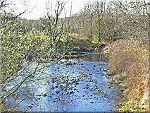 NX2255 : Stream at Barnsallie, near Glenluce by Oliver Dixon