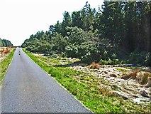 NX3057 : Storm damage in Mindork Forest by Oliver Dixon