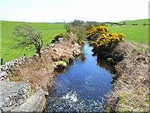 NX3361 : Barhoise Burn, near Kirkcowan by Oliver Dixon