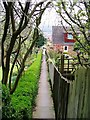 NZ6820 : Ginnel off Saltburn Road, Brotton by Mick Garratt