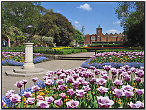 TQ2479 : Holland Park - Gardens and Theatre by Richard Thomas