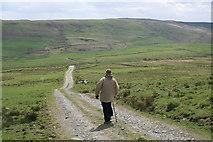 SJ0000 : Track near Mynydd Dwyriw by Peter Standing