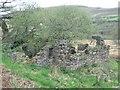 SN6406 : Derelict near Mynydd Garn-Fach by Nigel Davies
