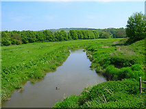 TQ5203 : Cuckmere River, Alfriston by Simon Carey