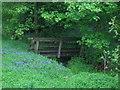 SK3169 : Footbridge in Hagg Wood by John H Darch