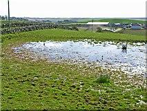 NX2059 : Flooded field at Glenhowl, near Glenluce by Oliver Dixon