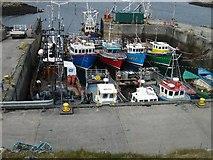 NF8855 : Kallin Harbour by Bob Jones