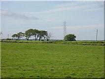 NS9365 : Cowhill by Richard Webb