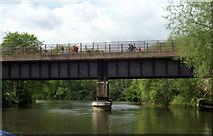 ST6867 : Cyclists on Saltford Railway Bridge, River Avon by Pierre Terre